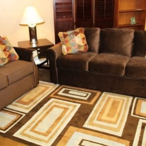 Luna Russ love seat and sofa set Pittsburgh Furniture
